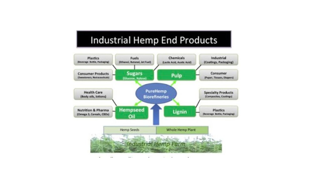 industrial-hemp-end-products