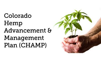 CHAMP - colorado hemp