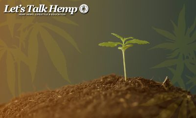 Lets Talk Hemp Newsletter