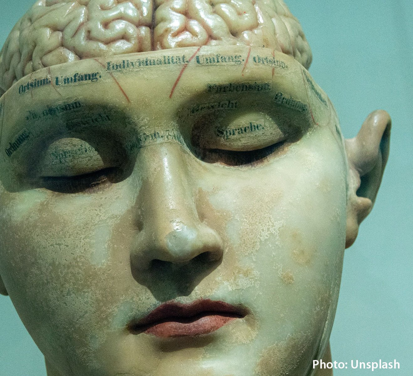 blood-flow-to-brain