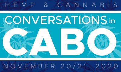 Cabo Hemp Conversations