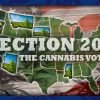 Election 2020 - the cannabis vote