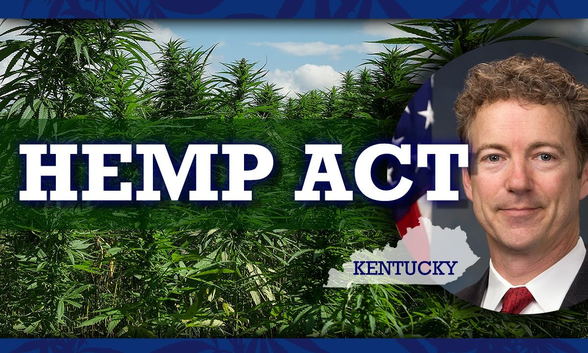 Rand Paul Hemp