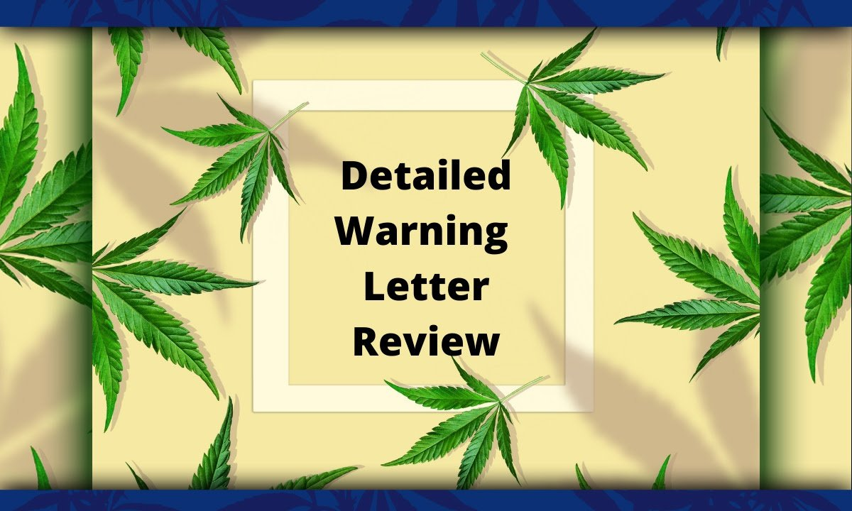 Detailed warning letter review