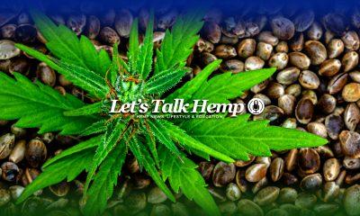 Lets Talk Hemp Newsletter